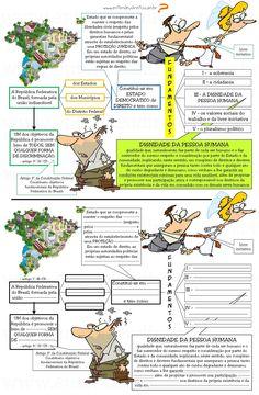 ENTENDEU DIREITO OU QUER QUE DESENHE ???: PRINCÍPIOS FUNDAMENTAIS + DIREITOS E GARANTIAS FUNDAMENTAIS - artigos 1º ao 17/CF