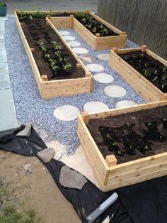 garden boxes 31 Awesome Raised Garden Bed Ideas For Backyard Lan. - garden boxes 31 Awesome Raised Garden Bed Ideas For Backyard Landscaping - Garden Bed Layout, Garden Layouts, Vegetable Garden Design, Vegetable Gardening, Organic Gardening, Veg Garden, Garden Soil, Vegetable Planter Boxes, Potager Garden