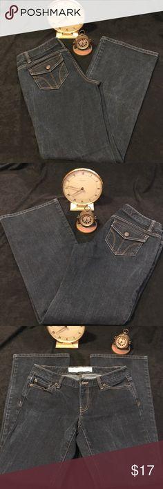 Ann Taylor Loft jeans          J-19 Ann Taylor Loft jeans flare color blue size 4 petite Ann Taylor Jeans