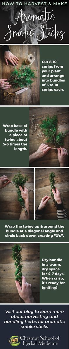 Gather + make your own aromatic herb bundles for cleansing, ritual, and purification // Chestnut School of Herbal Medicine  #herbalife #herbs #herbal #herbalist #herbalism #juniper #sage #whitesage #rosemary #herbgardening