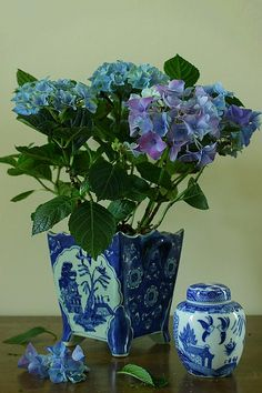 Still life with Blue Hydrangea and Chinese vase