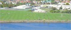 Colegio de educación secundaria en la ciudad de #dunedin. Estudia en #bayfieldhighschool con #xploraeducation. Tiene buena reputación académica, en especial el Departamento de Artes. También ofrece distintas actividades deportivas y educación al aire libre.
