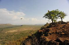 Etiopia - Nechisar National Park, Arba Minch