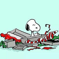 Nach Weihnachten ist vorm Umtausch