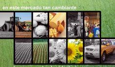 Marketing y Publicidad Córdoba Argentina  | ZANQ