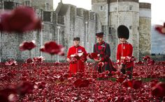 """""""Lest We Forget"""" – A Poppy for Each Fallen Soldier plus Some Vocabulary 
