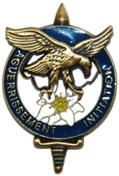 Brevet d'initiation à l'aguerrissement en Montagne Badges, Military Insignia, Special Forces, Initiation, Patches, Flags, Tanks, Special Ops, Air Force