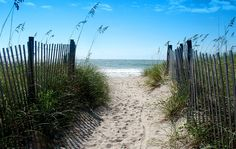 Great Savings Ideas for Your Next Vacation to Wilmington, North Carolina