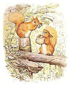 Squirrels (Public Domain Image)
