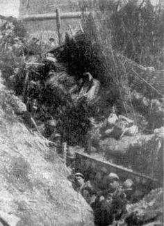 Int the trenches- Altopiano di Asiago