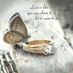 Love - the best feeling in the world http://paveb.com/