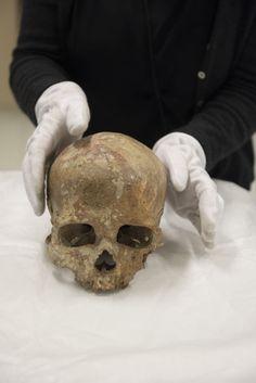 Le crâne de Cro Magnon - NICOLAS KRIEF POUR LE MONDE