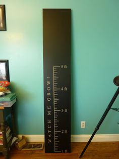 Repurposed door growth chart ( use bifold door panels for this)