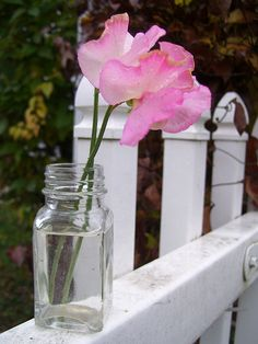 Sweet Peas from the Garden Sweet Pea Flowers, Little Flowers, Pretty In Pink, Pink Flowers, Beautiful Flowers, Birth Flowers, Vases, Growing Sweet Peas, Vase Transparent