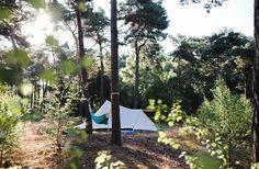 Winterkamperen (of voor de zomer) Natuurkampeerterrein de Vlagberg