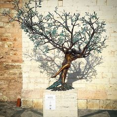 #pisa#raki#efes#toskana#turkiye#fenerbahce#besiktas#milano#france#paris#followme#instagram#follow#istanbul#italy#venezia#galatasaray#germany#rimini#floransa#roma#spello#amazing#iphone#switzerland#roma#monaco#montecarlo#bozcaada#izmir#zurich by blentdemir