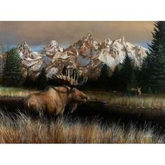 Posterazzi Teton Majesty Canvas Art - Kevin Daniel (18 x 24)