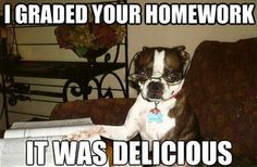 Sounds like my Boston lol!