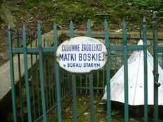 Cudowne źródełko przy Santuarium Matki Bożej w Borku Starym. #dominikanie #borekstary