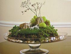 tiny world terrariums 기와에 분재