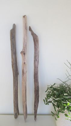 3 Greyish Color Natural Driftwood Branches For Woven Wall Hanging Art by LonelyBeach on Etsy