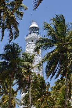 Dondra Head Lighthouse by Alexey Shadura / Im In Love, Lighthouses, Sri Lanka, World, Travel, Windmills, Northern Lights, Bell Rock Lighthouse, Light House