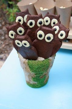 Chocolate Owl Cookies - Would be fun to decorate for Christmas or Halloween