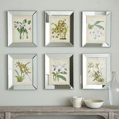 Orchids In Mirror Frames