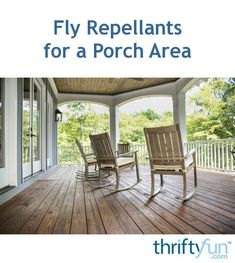"""""""Pesky flies in your porch area can keep you from enjoying the shade offered on a sunny day. This is a guide about fly repellants for a porch area. Porch Area, Pest Control, Sunny Days, Pergola, Deck, Shades, Outdoor Structures, Patio, Garden"""