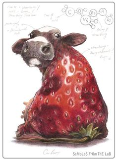 """Cow/Strawberry = Cowberry -Mixing vegetables and animals illustration series """"Samples from the Lab"""" by Rob Foote, South Africa."""