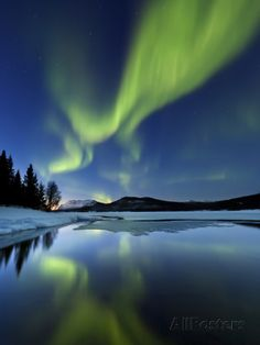Aurora Borealis over Sandvannet Lake in Troms County, Norway-Stocktrek Images-Premium Photographic Print Beautiful Sky, Beautiful Pictures, Beauty Dish, Landscape Photography, Nature Photography, Photography Ideas, Northen Lights, Foto Art, Night Skies
