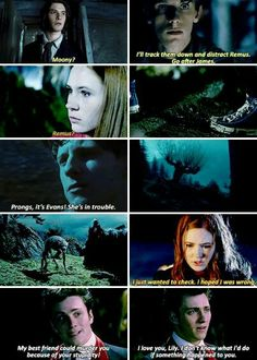 the marauders and lily. While I can't stand amy pond being portrayed as liky, I'll endure it for this Harry Potter Quotes, Harry Potter Love, Harry Potter Universal, Harry Potter Fandom, Harry Potter World, Film Manga, Lily Potter, Lily James Potter, Jily