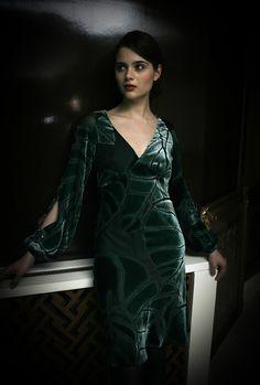 Gorgeous velvet dress