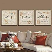 One Two Three Birds  Framed Canvas Print Set ... – AUD $ 147.56