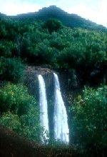See this Kauai Waterfall when you rent a car at Island Cars