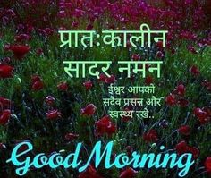 2019 Good Morning Images With Quotes In Hindi Shayari Photo Good Morning Babe Quotes, Good Morning Friends Images, Motivational Good Morning Quotes, Good Morning Happy Saturday, Latest Good Morning Images, Morning Wishes Quotes, Good Night Love Images, Good Morning Messages, Good Morning Greetings