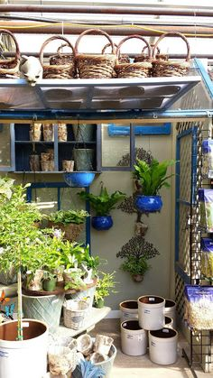 I Love My Garden: Warm up in a greenhouse.