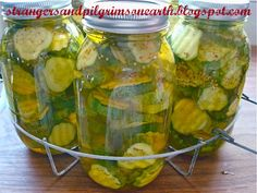 Strangers Pilgrims on Earth: Canning Bread Butter Pickles the Easy Way (and labels) Canning Pressure Cooker, Pressure Cooker Chicken, Pressure Cooker Recipes, Canning Pears, Canning Tips, Canning Recipes, Bread & Butter Pickles, Bread N Butter, Canning Granny