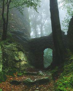 Portofolio Fotografi Pegunungan - Forest ruins, Karkonosze Mountains, Poland  #MOUNTAINSPHOTOGRAPHY