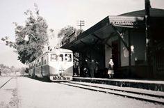 Tren de vicuña, chile en el año 1960