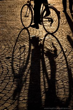 Wheels by Kah Kit Yoong.