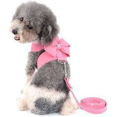 Pink, M Wedding Dress - Zunea Princess Walking Vest Harness and Leash Set for Small Dogs Soft Mesh Padded with Cute Crown and Polka Dot Pet Cat Harness Holiday//Party//Daily Wear for Photo Apparel