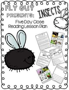 Fly Guy Presents Insects: Close Reading Five Day Plan by Camp Kindergarten Reading Day, First Grade Reading, Teaching Reading, Guided Reading, Learning, Close Reading Lessons, Reading Lesson Plans, Kindergarten Activities, Writing Activities