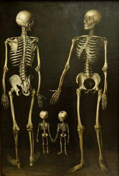 Family of Skeletons, C. 1800 J. Lopez Enguidanos