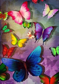 Butterfly a Thing of Beauty Butterfly Background, Butterfly Wall Art, Butterfly Painting, Paper Butterflies, Butterfly Wallpaper, Butterfly Kisses, Beautiful Butterflies, Butterfly Quotes, Cute Wallpapers