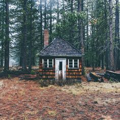 Cabin life on pinterest cabins old cabins and little cabin for Cabin in the woods oregon