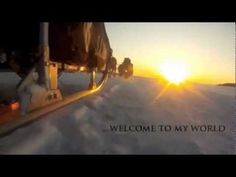 What is Iditarod all about?