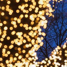 Liseberg Gothenburg Sweden. 14 December 2005. #mikaelsvenssonphotography #liseberg #gothenburg #göteborg #goteborgcom #thisisgbg #älskagöteborg #igersgothenburg #Sweden #bestofgothenburg #västkusten #visitsweden #visitgoteborg #visitgothenburg