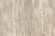 Claw Silver Oak cork flooring by Wicanders