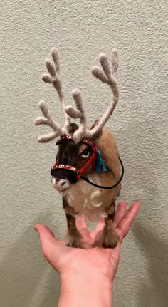 Needle felted Sami reindeer with harness by Julie King 2017